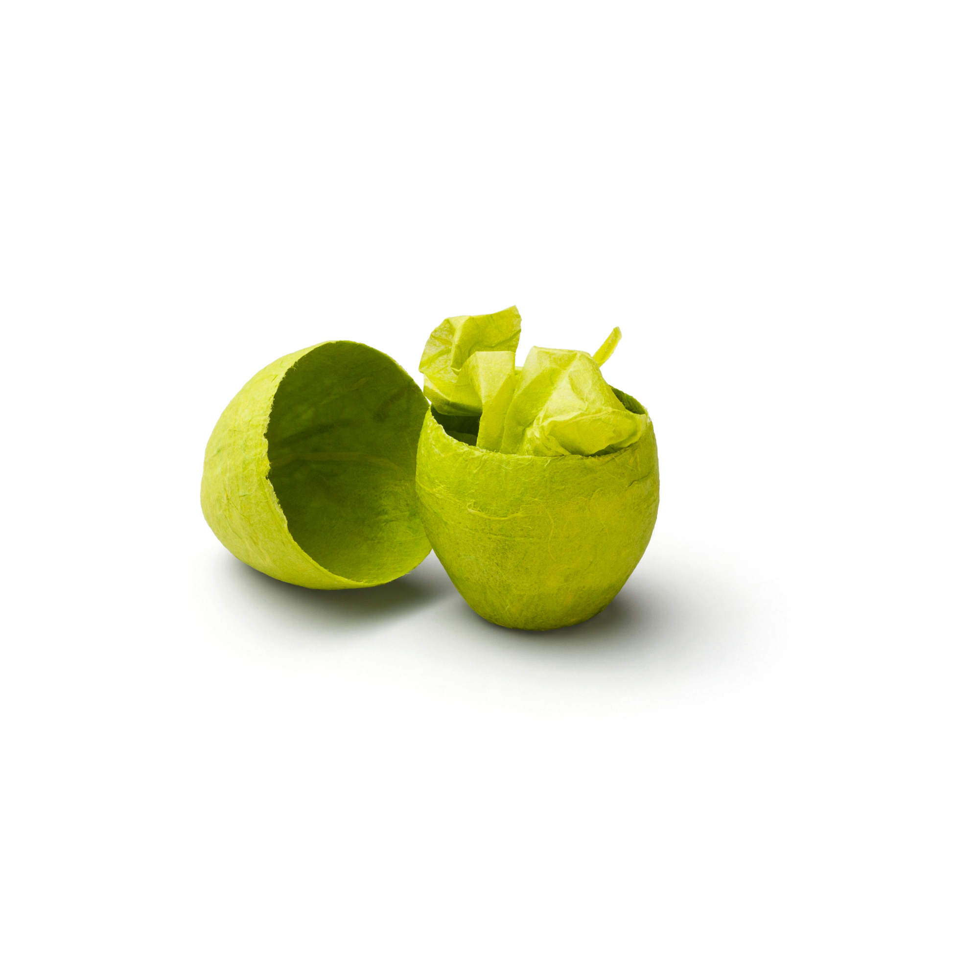 EGG PACKAGING standard green