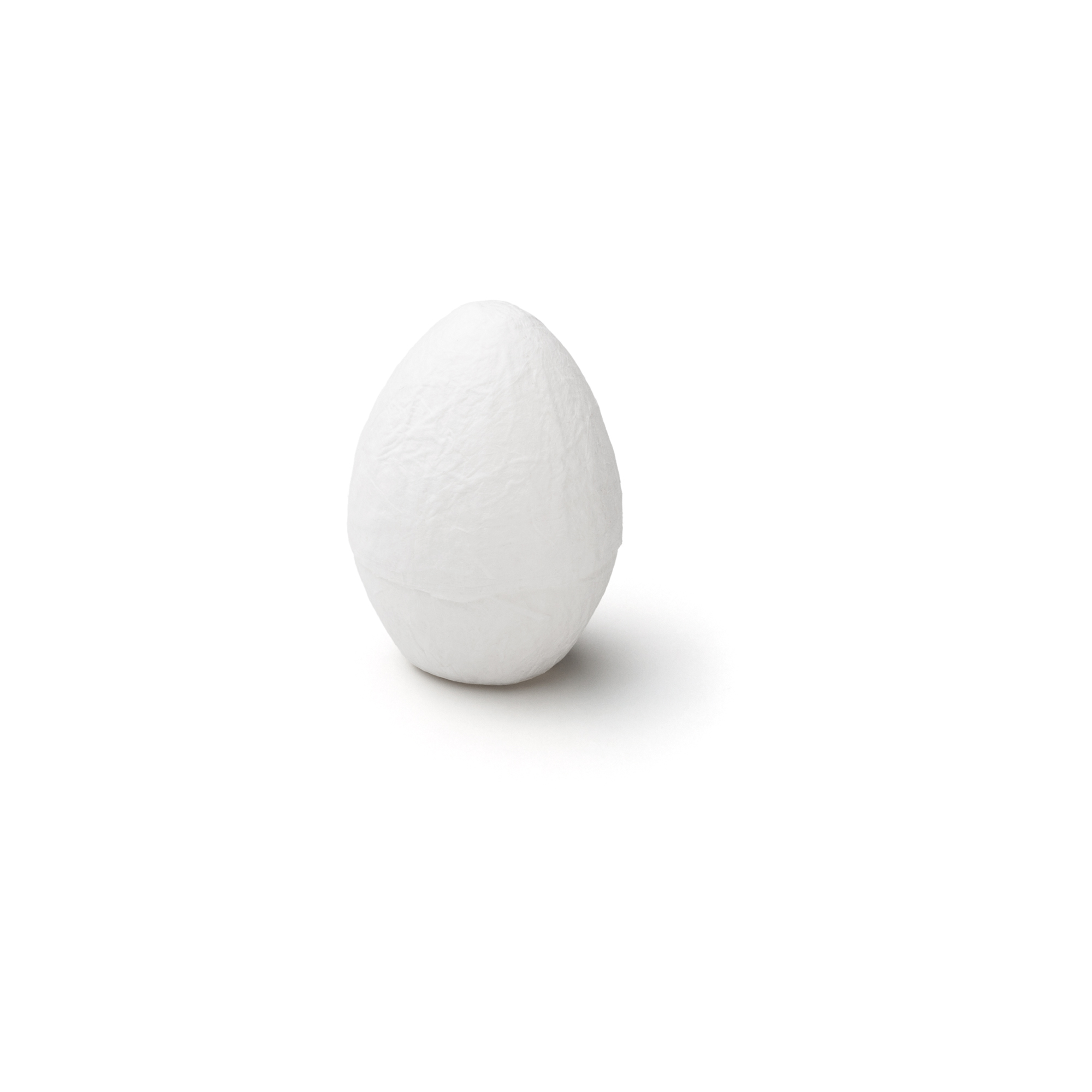 EGG PACKAGING standard white